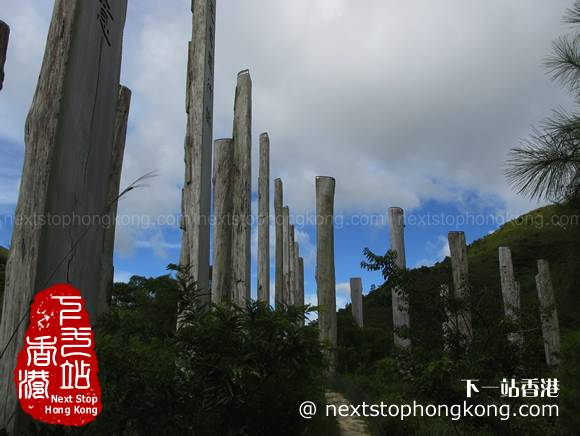 Timber Columns of Wisdom Path on Ngong Ping