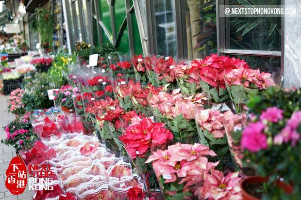 Flowers at Flower Market