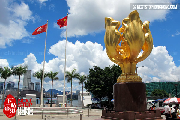 Best spots for Hong Kong Fireworks - Golden Bauhinia Wan Chai