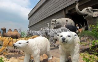 Noahs Ark Hong Kong