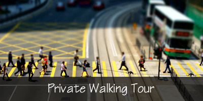Private Walking Tour Options