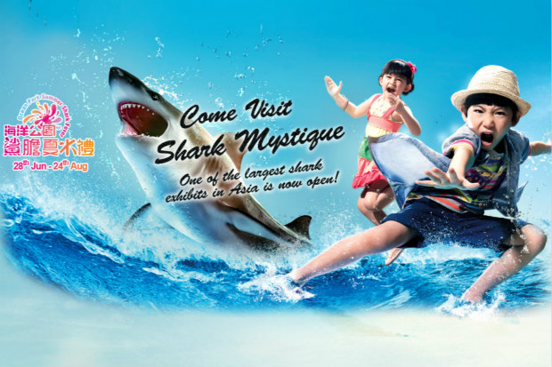 Ocean Park Hong Kong Opens New Attraction Shark Mystique