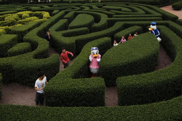 Mickey Maze