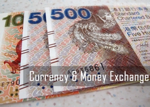 Currency Money Exchange