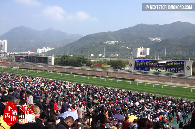 2013 Chinese New Year Horse Racing in Sha Tin Racecourse
