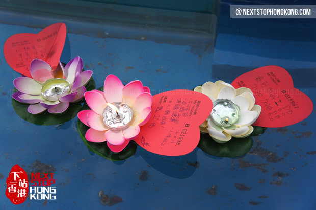 Release your wish on lotus in Lam Tsuen