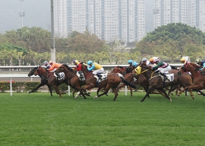 Sha Tin Horse Racing