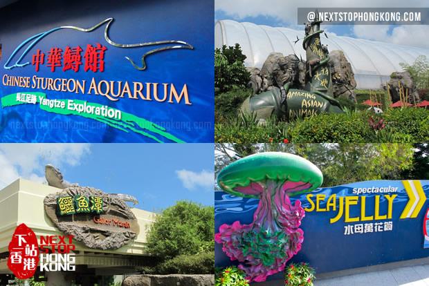 海洋公园不可错过的动物馆