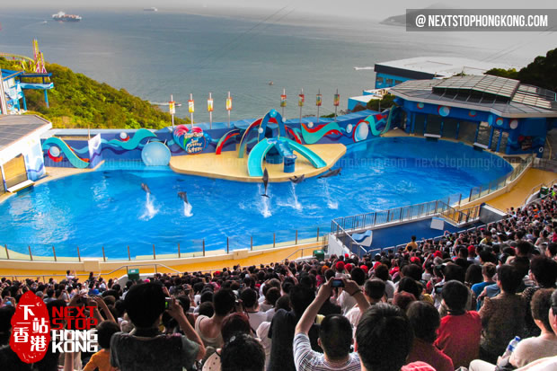 Dolphin Show in Ocean Theater (the Summit, Ocean Park)