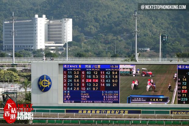Horse Racing at Sha Tin Racecourse
