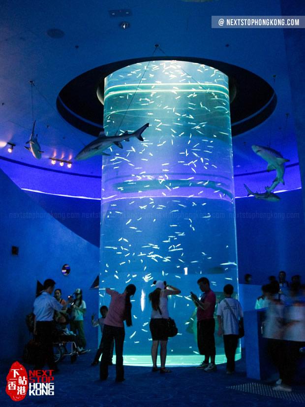 Small Aquarium inside Grand Aquarium, Ocean Park