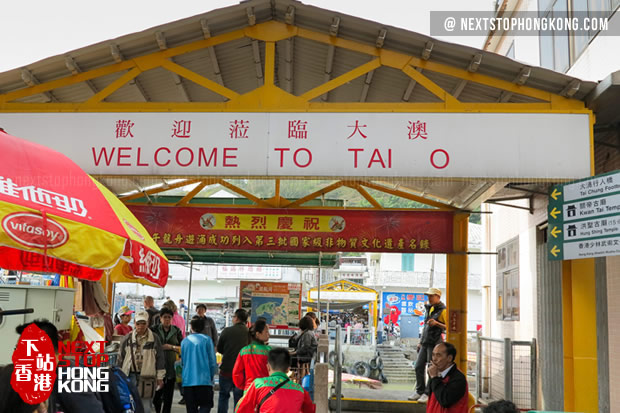 Welcome to Tai O Fishing Market