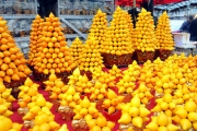 2016 Hong Kong Chinese New Year Flower Markets