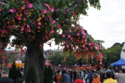Lam Tsuen Well-Wishing Festival
