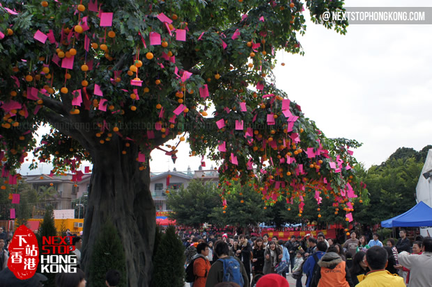 Wishing Tree in Lam Tsuen