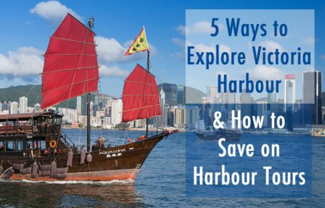Review of Harbour Tours