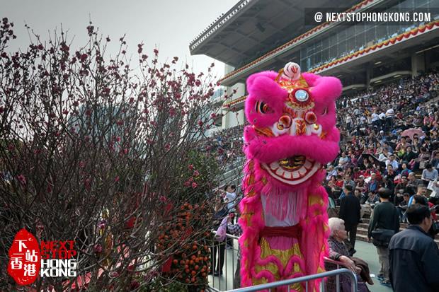 Horseracing - Chinese New Year Race Day 2018