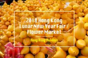 2018 Hong Kong Chinese New Year Flower Markets – Auspicious Flowers, Souvenirs, Local Snacks and More