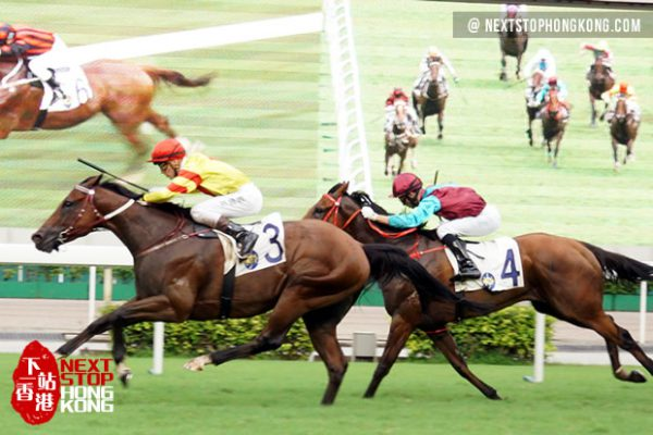 Hong Kong Horse Racing